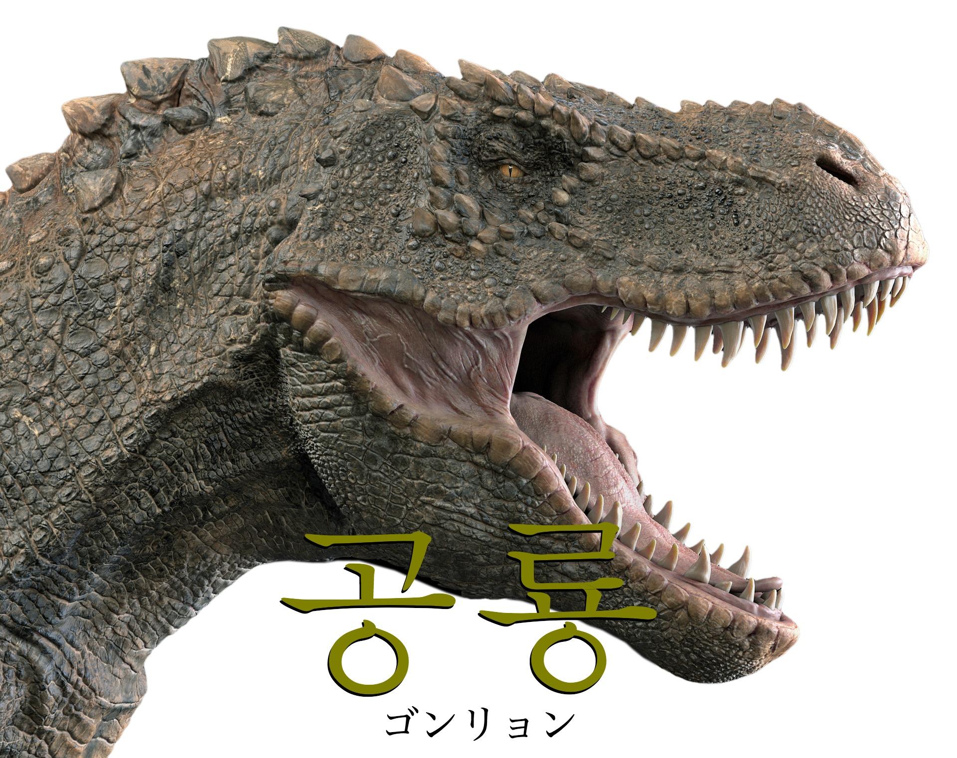 韓国語で「恐竜」の【공룡(ゴンリョン)】をタメ語で覚えよう!