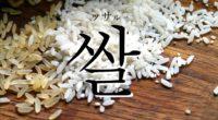 韓国語で「米(こめ)」の【쌀(ッサル)】をタメ語で覚えよう!