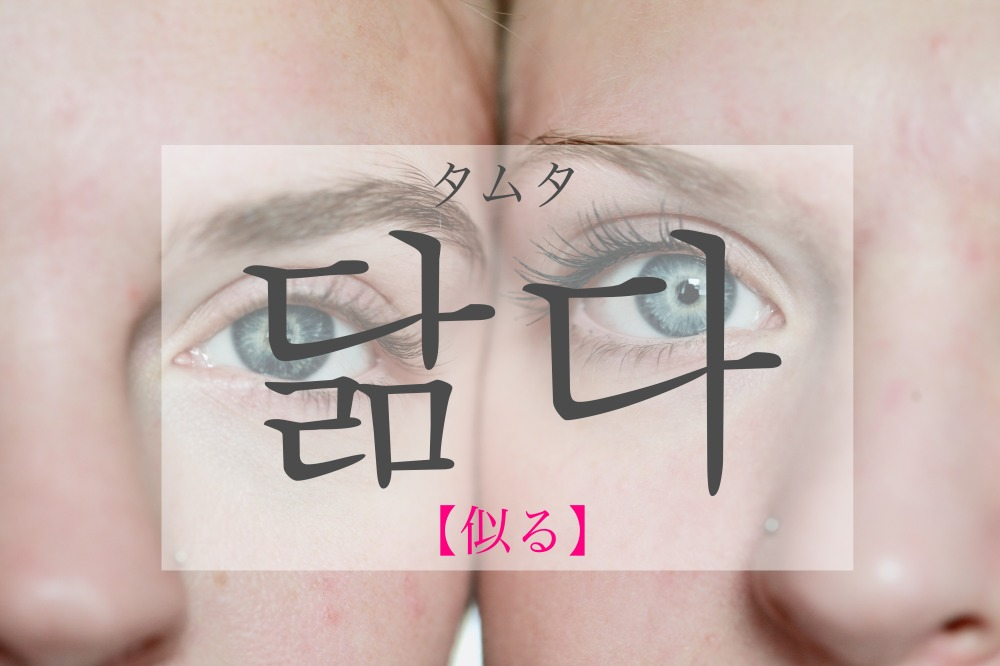 koreanword-similar