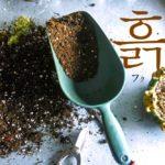 koreanword-soil