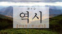 韓国語で「やはり・やっぱり」の【역시(ヨクシ)】の意味や発音は?例文も!