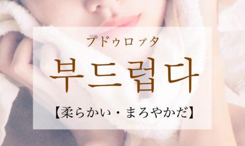 韓国語で「柔かい・まろやかだ」の【부드럽다(プドゥロプタ)】の活用や発音・例文は?