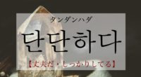 韓国語で「丈夫だ・しっかりしてる」の【단단하다(タンダンハダ)】の活用や発音・例文は?