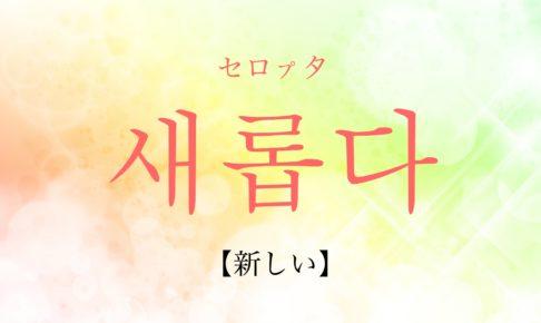 韓国語で「新しい」の【새롭다(セロプタ)】の活用や発音・例文は?