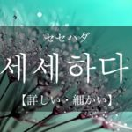 koreanword-be-detailed