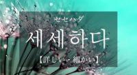 韓国語で「詳しい・細かい」の【세세하다(セセハダ)】の活用や発音・例文は?