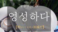 韓国語で「粗い・いい加減だ」の【엉성하다(オンソンハダ)】の活用や発音・例文は?