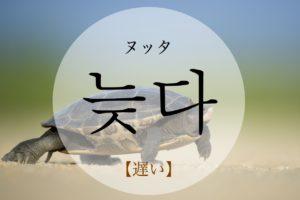 koreanword-late