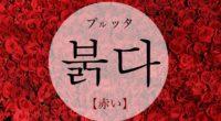 韓国語で「赤い」の【붉다(プルッタ)】の活用や発音・例文は?タメ語で覚えよう!