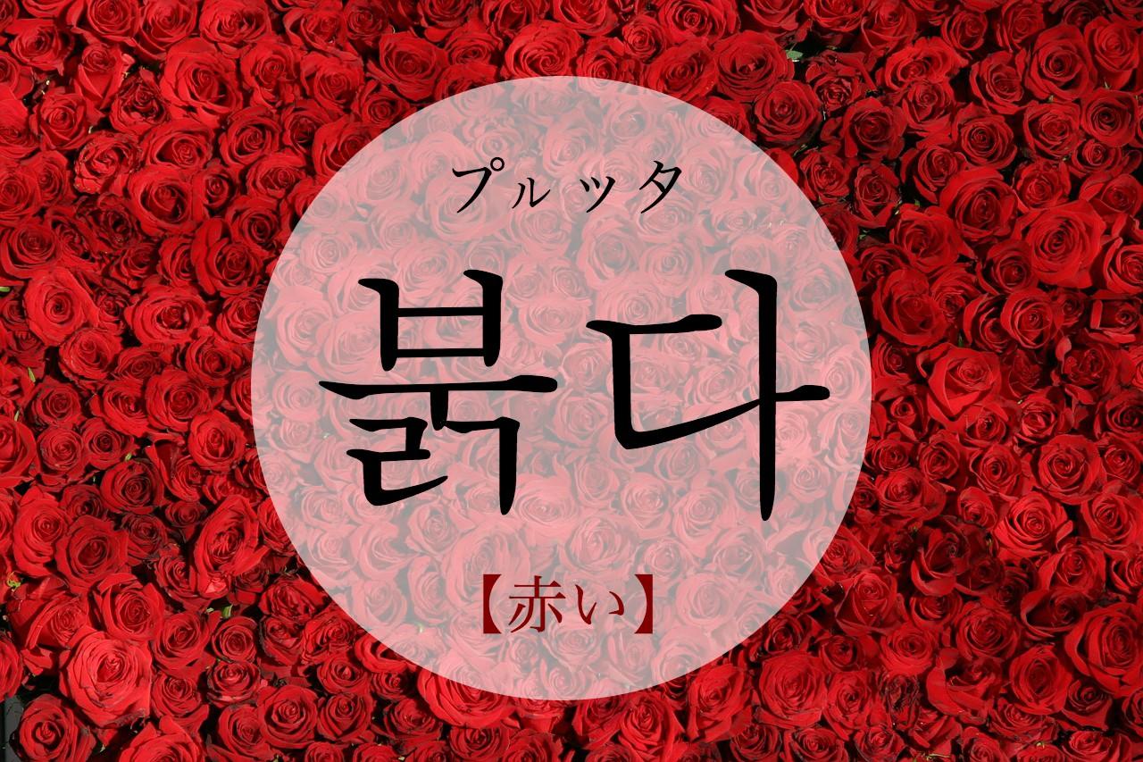 koreanword-red