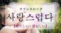 韓国語で「愛らしい・愛おしい」の【사랑스럽다(サランスロプタ)】の活用や発音・例文は?
