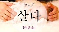 韓国語で「生きる」の【살다(サルダ)】の意味や例文・発音は?タメ語で覚えよう!