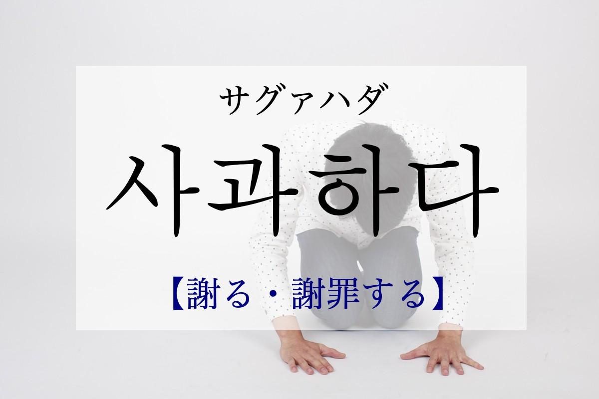 koreanword-apologize
