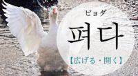 韓国語で「開く・伸ばす・広げる」の【펴다(ピョダ)】をタメ語で覚えよう!