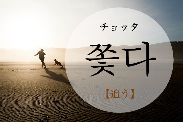 koreanword-to-persue