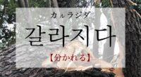 韓国語で「分かれる」の【갈라지다(カルラジダ)】の意味や発音・例文は?