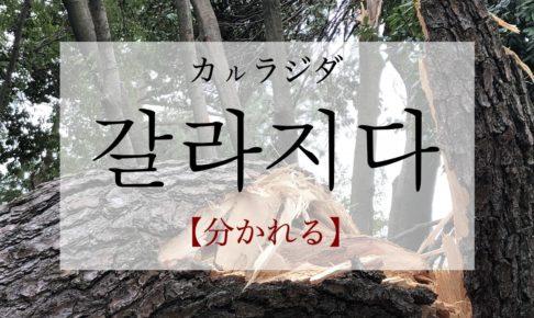 koreanword-to-separate