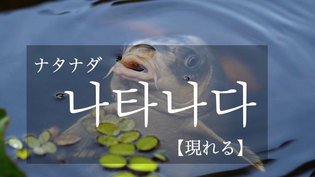 koreanword-appear