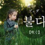 koreanword-blow