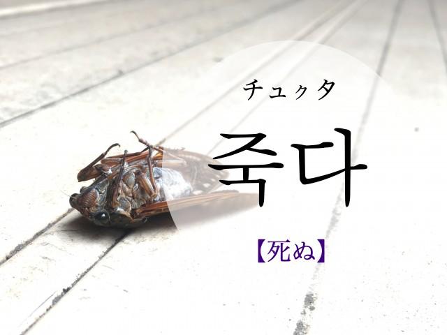 koreanword-die