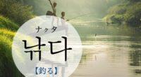 韓国語で「釣る」の【낚다(ナクタ)】の例文・活用や発音は?タメ語で覚えよう!