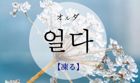 koreanword-freeze