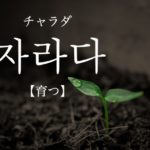 koreanword-grow-up