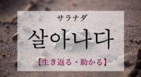 韓国語で「生き返る・助かる」の【살아나다(サラナダ)】の例文・活用や発音は?