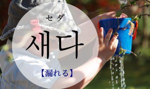 koreanword-leak