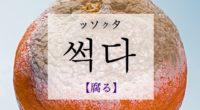 韓国語で「腐る」の【썩다(ッソクタ)】の例文・活用や発音は?タメ語で覚えよう