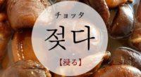 韓国語で「浸る」の【젖다(チョッタ)】の例文・活用や発音は?タメ語で覚えよう
