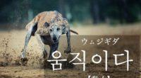 韓国語で「動く」の【움직이다(ウムジギダ)】の例文・活用や発音は?