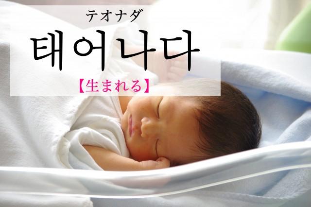 koreanword-procreate