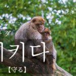 koreanword-protect