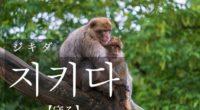 韓国語で「守る」の【지키다(ジキダ)】の例文・活用や発音は?タメ語で覚えよう