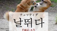 韓国語で「暴れる」の【날뛰다(ナルッティダ)】の例文・活用や発音は?