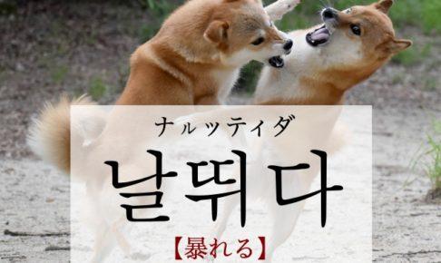 koreanword-rave