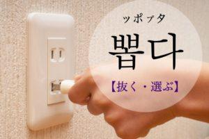 koreanword-select