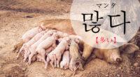韓国語で「多い」の【많다(マンタ)】の例文・活用や発音は?タメ語で覚えよう