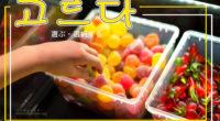 韓国語で「選ぶ・選択する」の【고르다(コルダ)】の例文・活用や発音は?