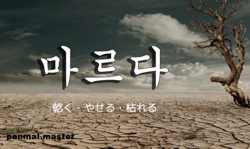 korean-words-dry