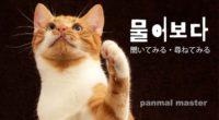 韓国語で「聞いてみる・尋ねてみる」の【물어보다(ムロボダ)】の例文・活用や発音は?