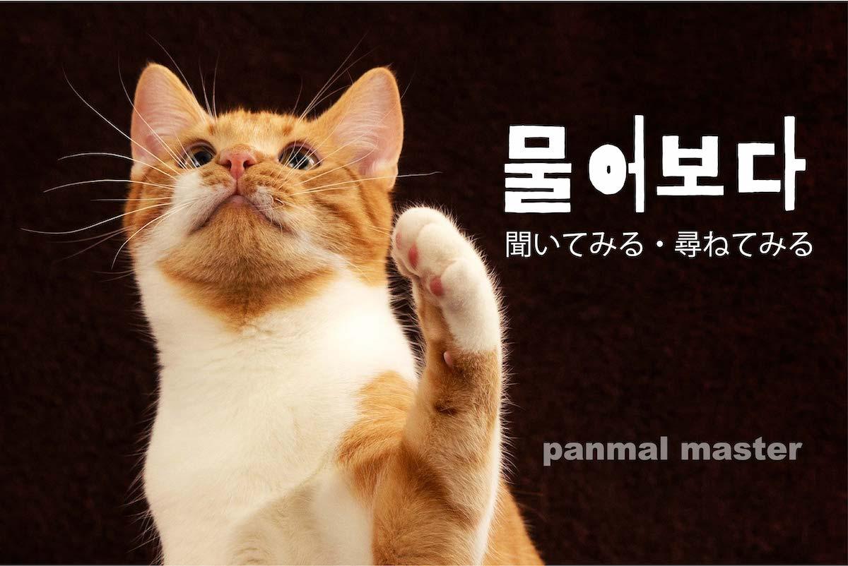 korean-words-ask
