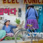korean-words-kind