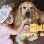 korean-words-take-care