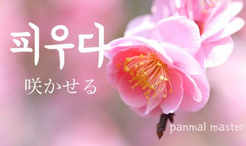 korean-words-make-open