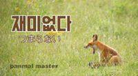 韓国語で「つまらない」の【재미없다(チェミオㇷ゚タ)】の例文・活用や発音は?