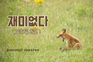korean-words-not-funny
