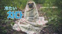 韓国語で「冷たい」の【차다(チャダ)】の例文・活用や発音は?