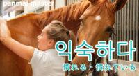 韓国語で「慣れる・慣れている」の【익숙하다(イㇰスカダ)】の例文・活用や発音は?